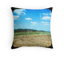 Buffulo Country Throw Pillow