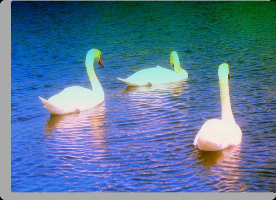 Peaceful drifting by ?? B. Randi Bailey