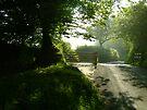 Path to Meavy by DonDavisUK
