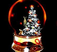 Snow Globe by Judi Taylor
