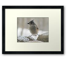 So cold that I feel like I'm caught between a rock and hard place Framed Print