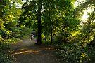 Woman in Sunlit Woodlands by DonDavisUK