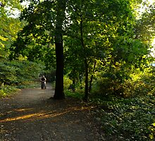 Woman in Sunlit Woodlands by DonDavisUK