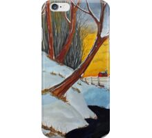 Back 40 Creek iPhone Case/Skin