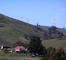 Wind Turbines at Carcoar, NSW by Jan Richardson
