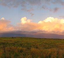 Sunset Storm - Springsure Tambo Road, Queensland by Paul Gilbert