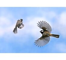 Fly Away With Me - Challenge Winner Photographic Print