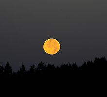 KOOTENAI MOONSET by kotybear