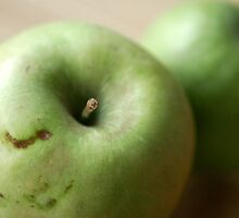 Green Apple by Dana L