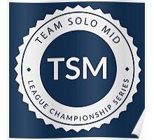 Vintage TSM Boyscout Badge Poster