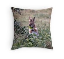 Red necked Wallaby. Throw Pillow