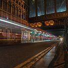 Central Station Lights by Stevie B