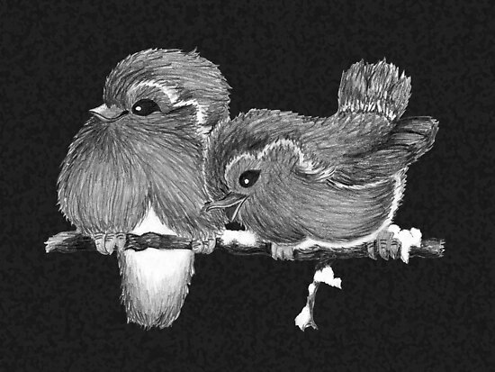 Feathered Friends with Charcoal by georgiegirl