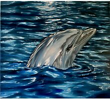 Dolphin Curiosity - Oil Painting Photographic Print