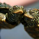 Turtle Hugs by Lori Deiter
