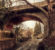 Loose Viaduct by Dave Godden