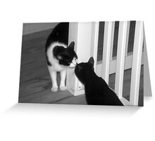 Kitty Meet And Greet Greeting Card