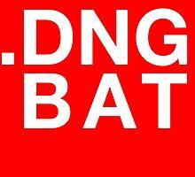 .DNG BAT by Benjamin Lehman