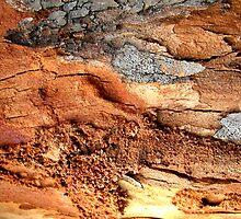 Red Earth Landscape by Kathie Nichols