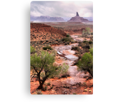 Off The Beaten Track Canvas Print