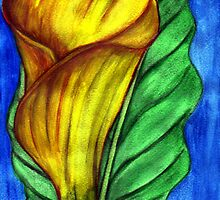 Yellow Arum Lily ~ Watercolour by Mariaan M Krog Fine Art Portfolio