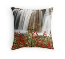 Falling Smoothly Throw Pillow