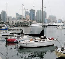 Embarcadero at San Diego by Jan  Wall