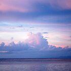 Pastel Colored Sky by Carol Barona