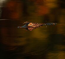 Gator in Oil? by Phillip  Simmons