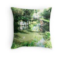 A Quiet Backwater Throw Pillow