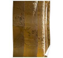 Columns of Karnak Poster
