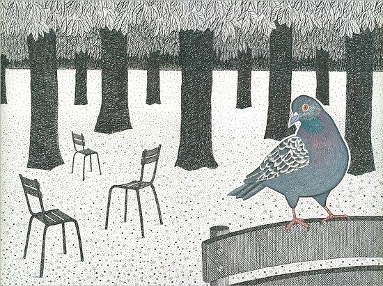 Pigeon in the Jardin de Luxembourg, Paris by John Grundeken