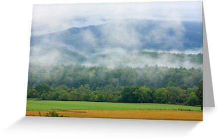Peaceful Morn by Gary L   Suddath