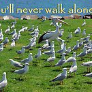 You&#x27;ll never walk alone! by George Petrovsky