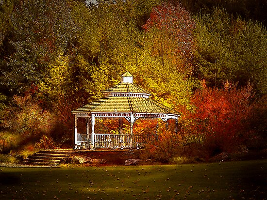 Gazebo in the Forest by Renee Dawson
