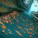 Harmar Leaves by Micalyn