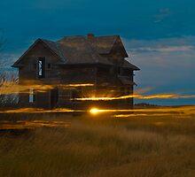 Palace Lights by PFrogg