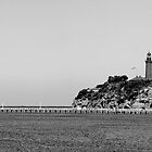 Queenscliff Views by Steven  Agius