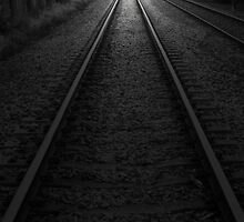Train Lines by Cathi Norman
