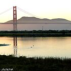 #564   San Francisco Morning  #2 by MyInnereyeMike
