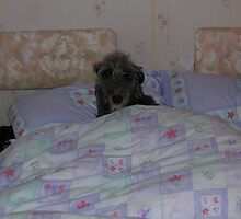 whit dae ye mean ive slept in its sunday! by joak