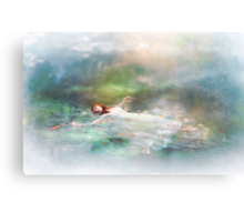 Illumine Canvas Print