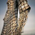 Straw Man by Colin Tobin