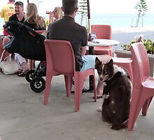 *I HOPE I'M GOING TO GET A DRINK!'* Somerton Park, Beach, Adelaide by Rita Blom