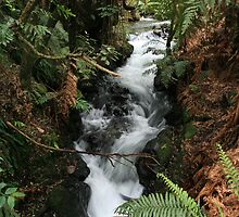 Buried Village Waterfall, Rotorua, New Zealand by jwatson