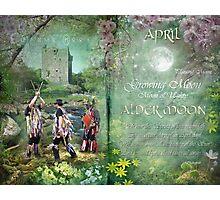 April : Alder Moon Photographic Print