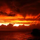On Fire by Jarede Schmetterer