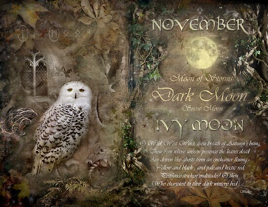 November - Ivy Moon by Angie Latham