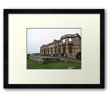 Surviving and Thriving Framed Print