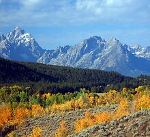 Teton Autumn by noffi